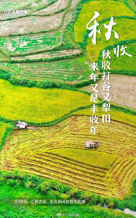 中国秋收图景